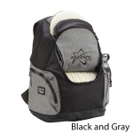 Prodigy Discs BP-3 V2 Backpack Bag (12-17) (BP-3 V2 Backpack Bag, Standard)
