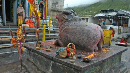 Kedarnath Temple NandiBull - The Chardham Camps Uttarkashi