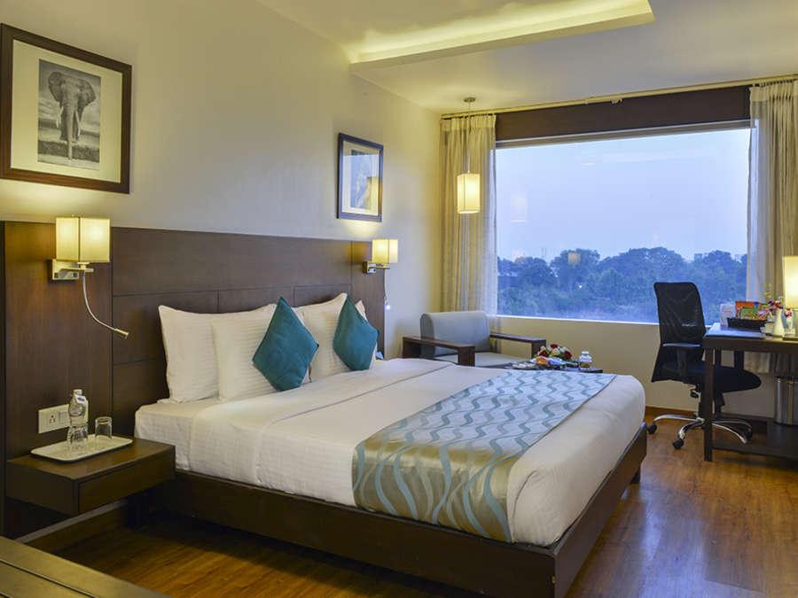 1589 Hotels  Accomodation 1589 Hotels