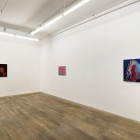 Wrister, Blister, Plaster, 2013, installation view, Foxy Production, New York